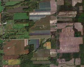 Farmers_pallet
